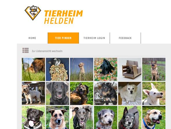 Tierheimhelden_Hunde