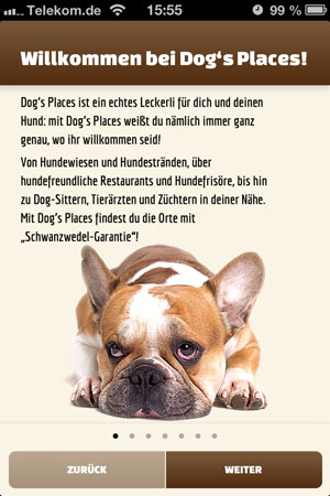 Dogs_Placec_1