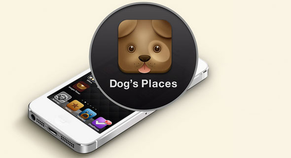 Dogs_Places