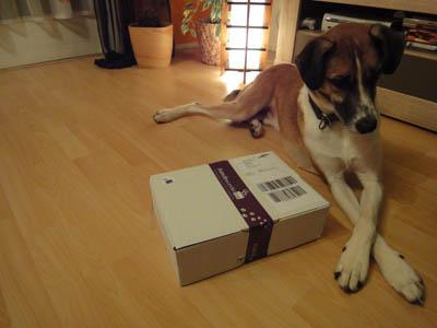 Hundewunderbox1