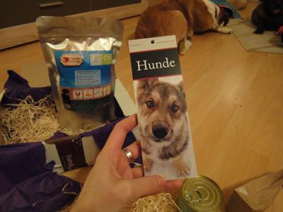Hundewunderbox13