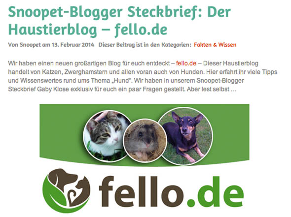 Interview mit fello