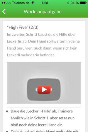 High-Five-2