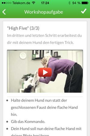High-Five-3-3