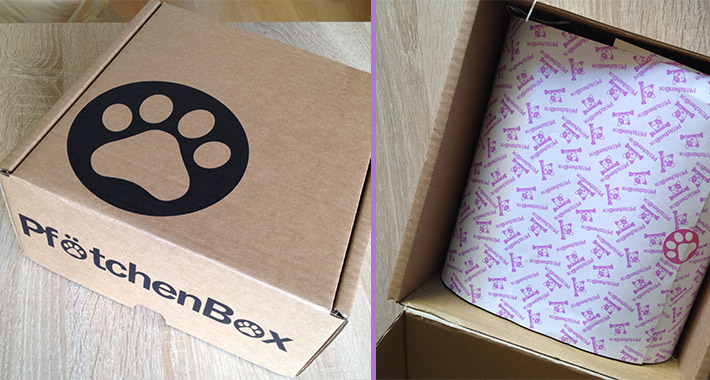 PfoetchenBox1