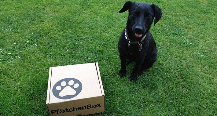 PfoetchenBox8