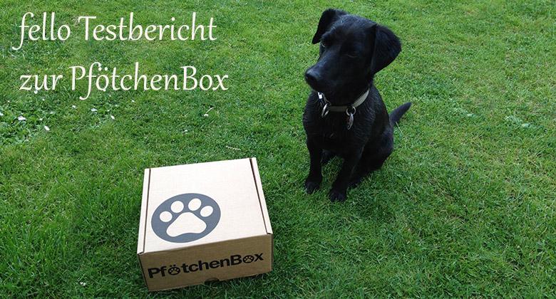 Pfoetchenbox-Test