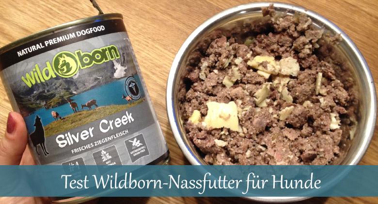 Futtertest-Wildborn